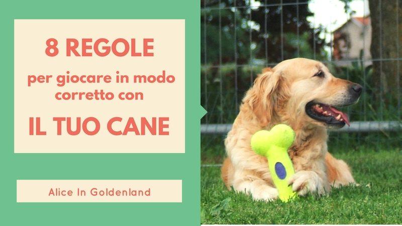 8 regole per giocare in modo corretto con il tuo cane