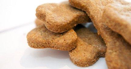 biscotti-x-cani-1