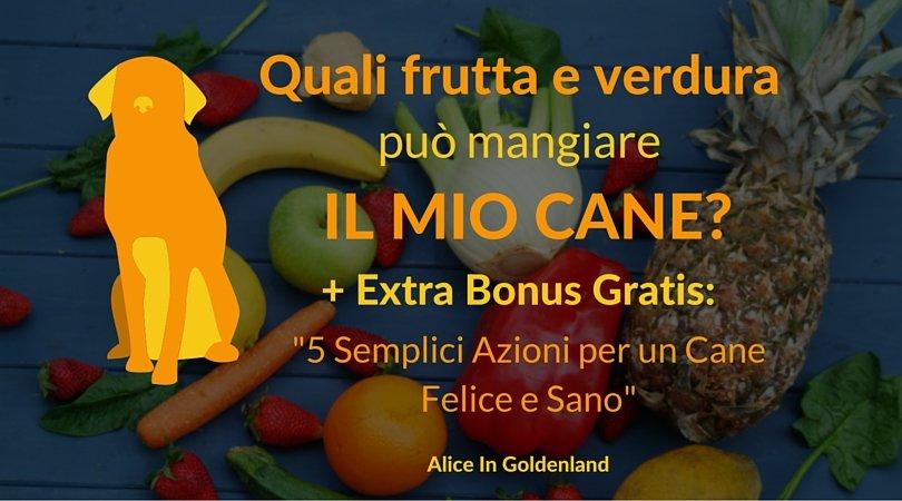 Quale frutta e verdura può mangiare il mio cane? + Extra Bonus!
