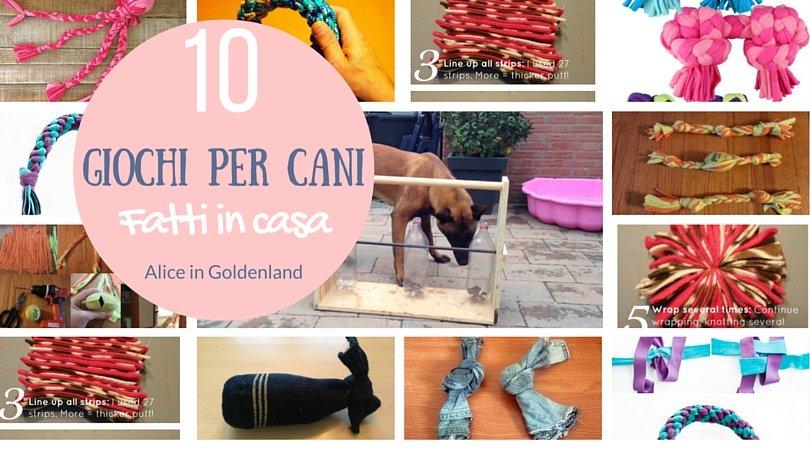 10 Giochi per cani fatti in casa