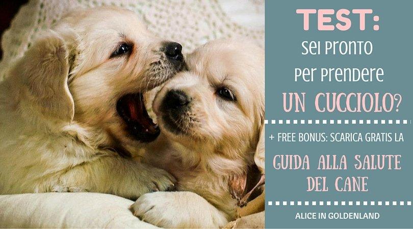 Sei pronto per accogliere un cucciolo? Fai il TEST! + bonus gratuito: Guida alla Salute del Cane
