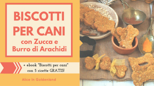Biscotti per cani con zucca e burro di arachidi, quick and healthy homemade pumkin dog treats