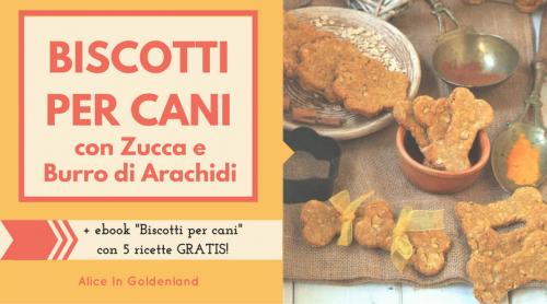 Biscotti per cani con zucca e burro di arachidi, quick and healthy homemade pumkin dog treats