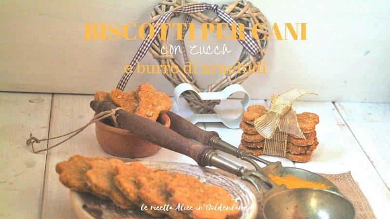 Biscotti per cani con zucca e burro di arachidi
