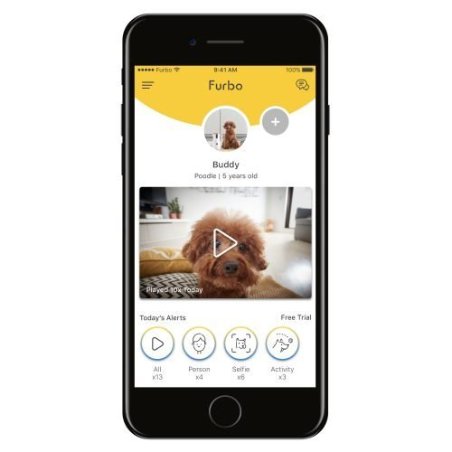 Furbo dog camera app homepage
