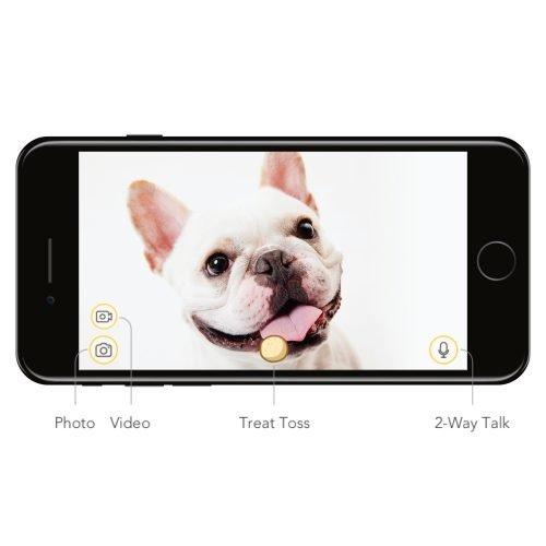Furbo Dog Camera app
